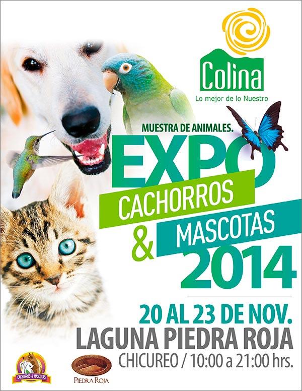 expo-cachorros-y-mascotas-afiche